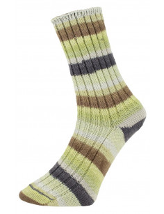 Pro Lana Golden Socks Tannheim 5 190.06